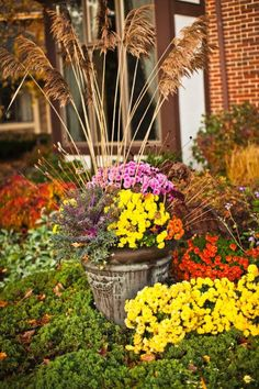Mix dried grasses with autumn flowers for interesting texture in your containers. via Midwest Living