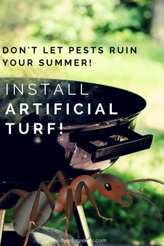 Stop letting yard pests take over your lawn! Take it back with artificial turf. Learn why turf will dramatically reduce your yard pests. Don't Let, Let It Be, Lawn Turf, Long Term Food Storage, Artificial Turf, Yard, Summer, Heavenly, Grass