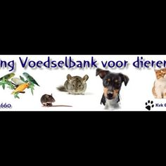 Help us to carry animals in poverty - Unfortunately, more and more people affected by the crisis. This has   huge implications for the pets. Many families come unwillingly in a   temporary or permanent situation where they no longer can provide   financially for their pets. Our pets are ...