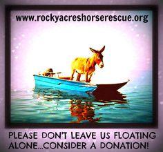 We need your help!! www.  rockyacreshorserescue  .org