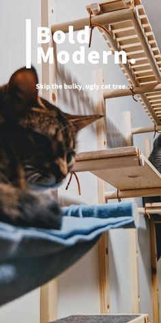 10 My Etsy Shop Posts Ideas In 2021 Cat Furniture Cat Shelves Cat Playground