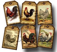 Roosters, Chickens -barn Yard Touch- 20 Rustic Vintage Art Mini Hang/gift Tags…