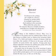 Cute Daisy Quotes Quotesgram Daisy Pics Daisy Quotes