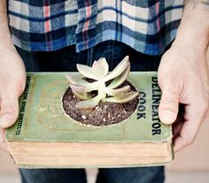 An altered book that is actually useful,  not that they have to be useful mind you!  :-)