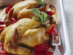 Stubenküken mit Blutorange und Sahne ist ein Rezept mit frischen Zutaten aus der Kategorie Hähnchen. Probieren Sie dieses und weitere Rezepte von EAT SMARTER!