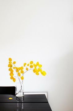 Black & white with yellow accents for the dining room Color Inspiration, Interior Inspiration, Mellow Yellow, Yellow Black, Yellow Interior, Yellow Accents, Shades Of Yellow, Ikebana, Bunt