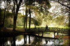 Gorgeous Lover Bridge