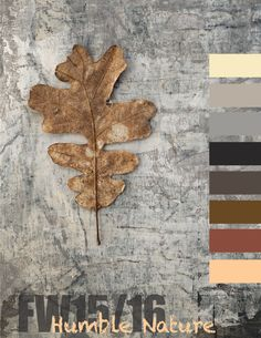Humble-Nature-FW1516-Season-Preview