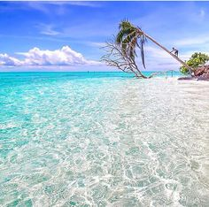 Palawan, Philippines//