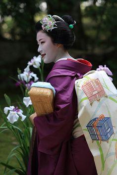 Maiko wearing nadeshiko and tsuyushiba kanzashi