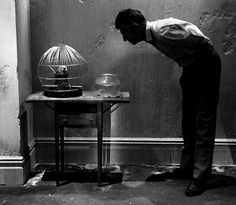 Words are all we have quot Samuel Beckett
