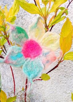 Uniqiue flowers,brooch and pin, hand felted. No two flowers are the same. Rainbow Flowers, Green Flowers, Spring Flowers, Birthday Wishes, Birthday Gifts, Rainbow Painting, Flower Brooch, Hair Pins, Flora