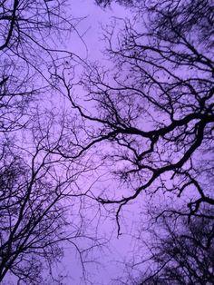 ♡ тнoѕe нardeѕт тo love need iт мoѕт ♡ aesthetic ~purple~ - - Violet Aesthetic, Dark Purple Aesthetic, Lavender Aesthetic, Rainbow Aesthetic, Aesthetic Colors, Aesthetic Pictures, Aesthetic Photo, Purple Love, All Things Purple