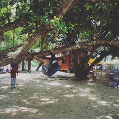 김 혁 on Instagram: #코타키나발루 #사피섬 에는 #원숭이 가 유명한가봄 #코딱지나발루