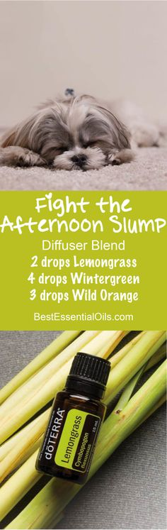 Fight the Afternoon Slump doTERRA Diffuser Blend