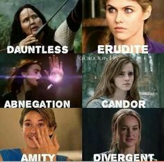 The Hunger Games, Percy Jackson, The Mortal Instruments, Harry Potter, The Fault in our Stars, Divergent
