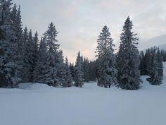 #klockerhof #familiekoch #dashotelfürentdecker #zugspitzarena #tirol #winter #schnee Winter Schnee, Zugspitze