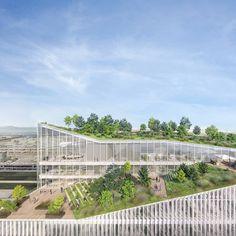Human Technopole y Arexpo presentan el proyecto para el Campus Human Technopole y para el nuevo edificio que albergará los laboratorios de investigación: diez pisos de altura y 35.000 m2 dedicados a tareas científicas y tecnología de punta para ser construidos y completados en tres años.