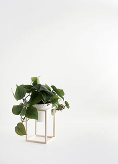 DIY Mini Wood Plant Stand
