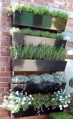#Garden Wall - metal planters on brick    Reuseable plants and wall hanging - great for offering vertical interest - tropical vines? This might work for me this year this way the dogs wont get to all my plants