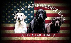 Dog Mom beagle retriever hound puppy pug truck car window sticker decal #604