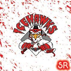 Adirondack Ice Hawks hockey team - Google Search