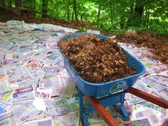 Newspaper mulching - Have very few weeds. Wet the ground, put 5 to 6 layers of newspaper down (no colored pages), wet once more. Put shredded leaves on top but you can use commercial mulch. Keeps moisture in, reduces amount of mulch needed and keeps it in place and the newspaper breaks down over time and adds to the soil.