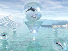 dolphin wallpaper 3d