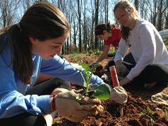 Community Gardens | Atlanta Community Food Bank