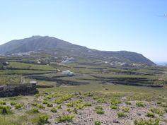 Vineyards, Santorini, Greece Santorini Greece, Vineyard, Mountains, Places, Nature, Travel, Greece, Wine, Naturaleza