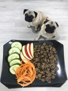 Not everyone can feed a biological appropriate diet for their pug. Kibble may be the only option but you can make it better with these 7 ways to improve kibble for you pug. Food T, Raw Food Diet, Safe Food, Dog Food, Pet Fresh, Best Puppy Food, Dog Diet, Cat Drinking, Puppy Care