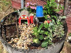 Fairy Farm Garden