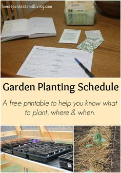 A free garden printing schedule to help plan what to plant, where, and when.