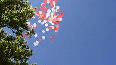 Suelta de globos en la plaza de la Marina en Zamora Plaza, Balloon Release, Wedding Balloons, Helium Balloons