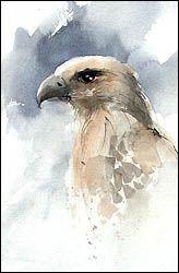 Stars Portraits - Paint a bird tutorial