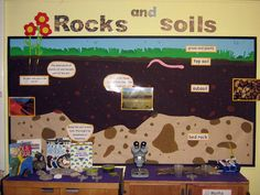 Primary Displays - Photographs and Examples of Primary Teaching Displays 1st Grade Science, Primary Science, Primary Teaching, Elementary Science, Teaching Science, Science Education, Science For Kids, Teaching Displays, Class Displays