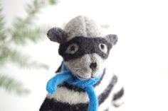 Bandit Raccoon,  small woodland friend