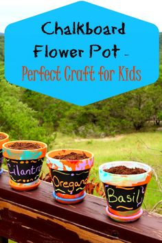 Chalkboard Flower Pots - House of Faucis Fun Crafts For Kids, Craft Activities For Kids, Summer Activities, Gifts For Kids, Craft Ideas, Toddler Activities, Diy Ideas, Upcycled Crafts, Easy Diy Crafts