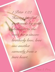 1 Peter 1:22 Faith Quotes, Bible Quotes, Bible Verses, Love Scriptures, Bible Words, Christian Friends, Christian Quotes, Nice Words About Life, In Remembrance Of Me