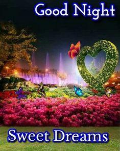 Good Night For Him, Good Night Funny, Good Night Love Messages, Good Night Love Quotes, Good Night Greetings, Good Night Gif, Good Night Wishes, Evening Greetings, Night Time