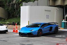 Blue Novitec Torado In Singapore
