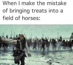 Have you ever had this feeling when feeding in a field of horses