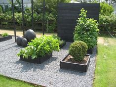 Black pallet collars and gravel - Floral Garden Ideas Back Gardens, Outdoor Gardens, Scandinavian Garden, Herb Garden Design, Home Vegetable Garden, Outdoor Landscaping, Dream Garden, Deco, Garden Planning