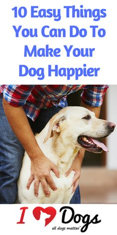 Easy Things You Can Do To Make Your Dog Happier