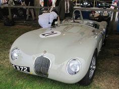 Jaguar C type 1952