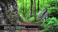 What do YOU think are the most scenic mountain bike trails in the eastern U.S.A.? (the 12 southeast states claim these 11:  Alafia River State Park, Brandon, FL. Bear Creek, Ellijay, GA. Douthat State Park, ViA. Dupont State Forest, Brevard, NC. Lovit Trail, Mt. Ida, AR.  Monte Sano State Park  Land Trust, Huntsville, AL. North Fork Mountain Trail, Petersburg, WV. Props Run Trail, Slatyfork, WV. Raccoon Mountain, Chattanooga, TN.  Syllamo, Mountain View, AR.Tsali, Bryson City, NC
