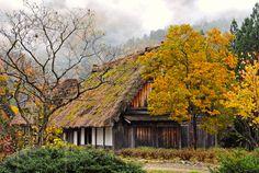 New post on autumncozy