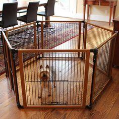 e8962781e5f01049fb676821473997e4--dog-gates-pet-gate
