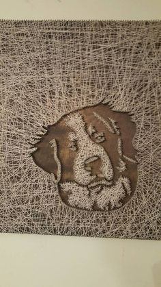 Burmese Mountain Dog by PawtiqueCollars on Etsy Bermese Mountain Dog, Mountain Dogs, Crafts To Make, Arts And Crafts, Diy Crafts, String Art Templates, String Crafts, Paper Crafts Origami, Creative Crafts