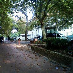 Stellenbosc in Autumn Rest Of The World, Sidewalk, Autumn, Instagram, Side Walkway, Fall, Sidewalks, Pavement, Walkways
